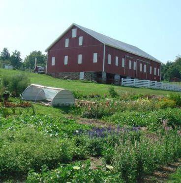 Evermore Farm Local Farm